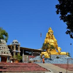 gold-leaf-manetti-sculpture-trincomalee-sri-lanka